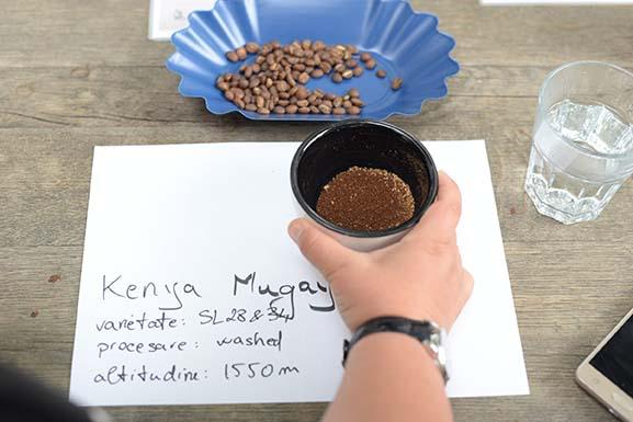 jassyro-cupping1-1